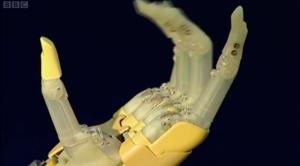 biomechanic limbs