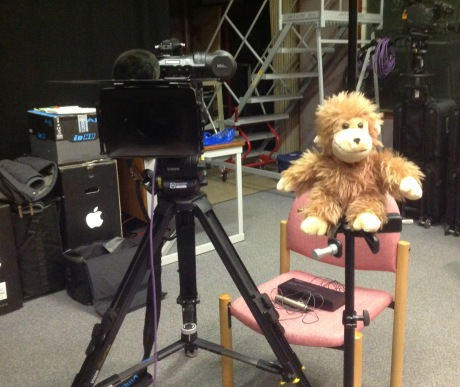 Monkey is an experienced interviewer who has worked previously for Channel 4